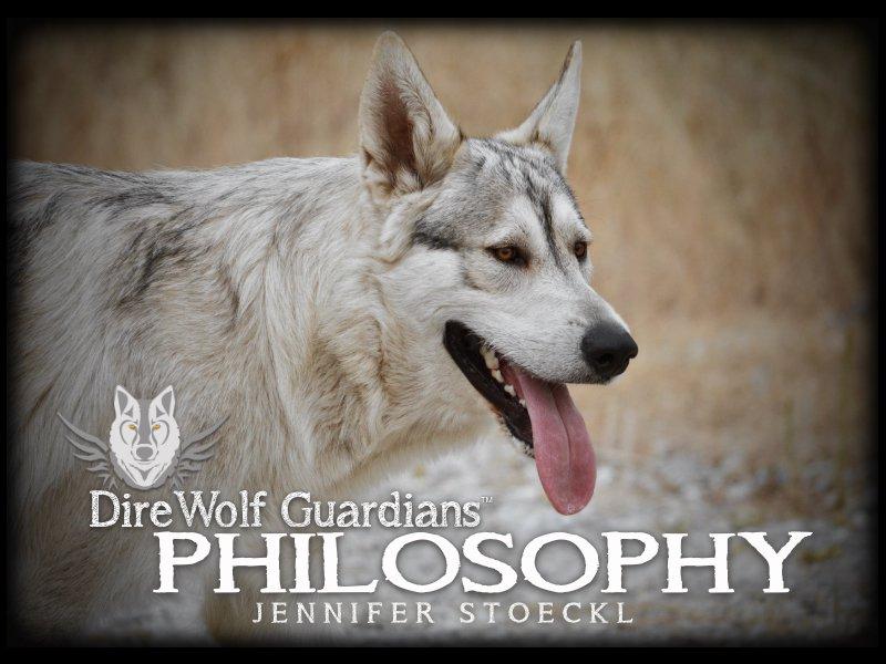 DWG Philosophy Book Cover.jpg