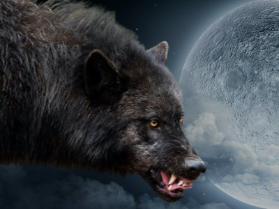 DWP Website - black wolf moon.jpg