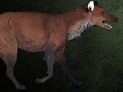 DWP Website - subspecies banner 1.jpg