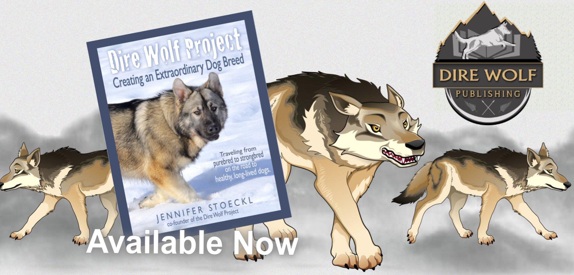 DWP book - carousel 1.jpg